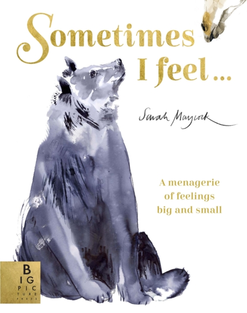 Cover for: Sometimes I Feel... : A Menagerie of Feelings Big and Small