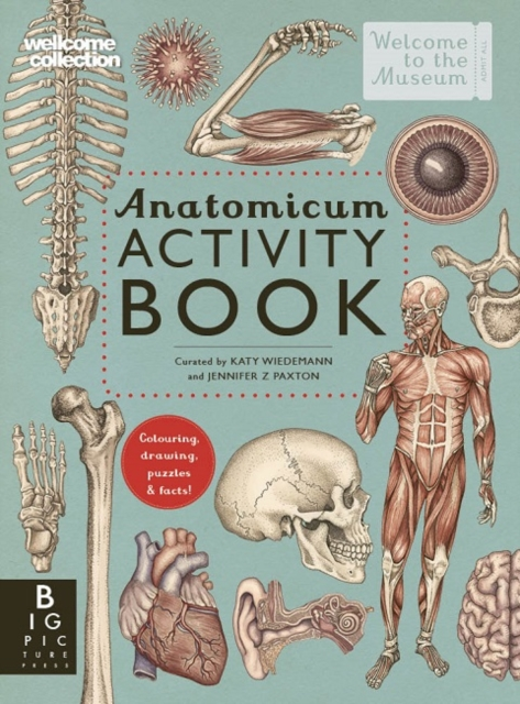 Cover for: Anatomicum Activity Book