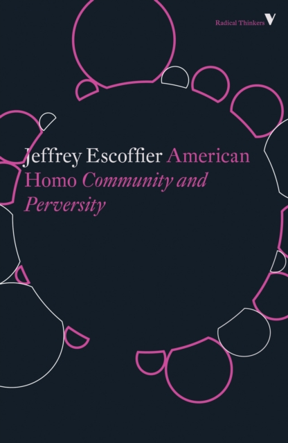 Image for American Homo : Community and Perversity