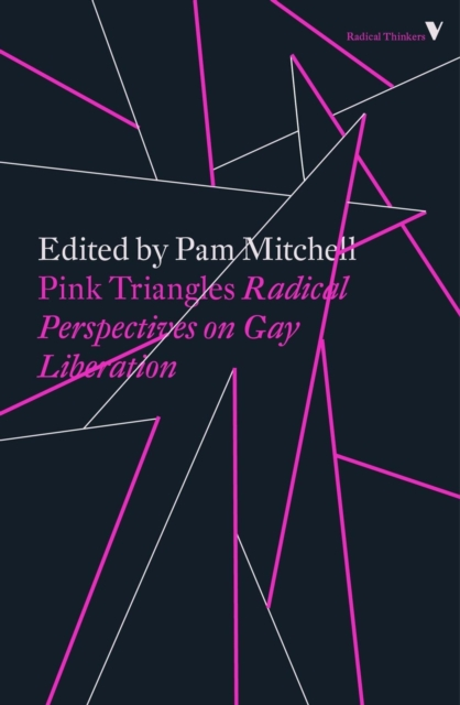 Cover for: Pink Triangles : Radical Perspectives on Gay Liberation