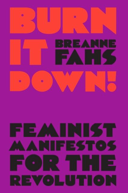 Image for Burn It Down! : Feminist Manifestos for the Revolution