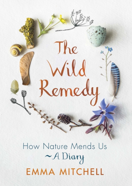 Image for The Wild Remedy : How Nature Mends Us - A Diary