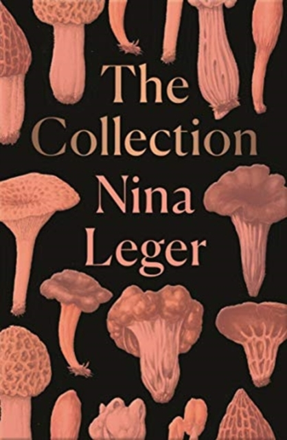 Cover for: The Collection