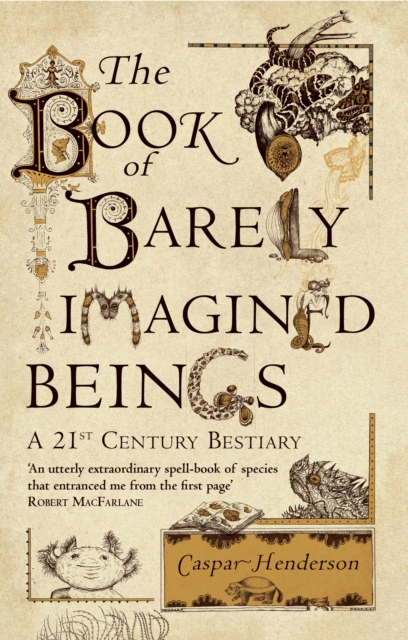 Cover for: The Book of Barely Imagined Beings : A 21st-Century Bestiary