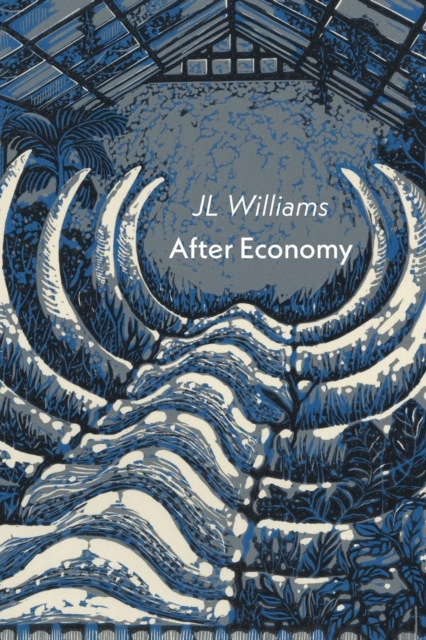 Cover for: After Economy