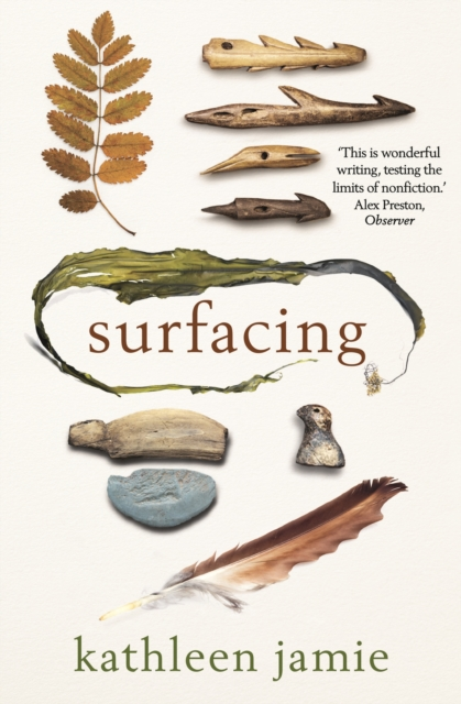 Cover for: Surfacing