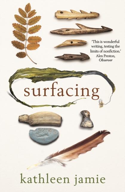 Image for Surfacing