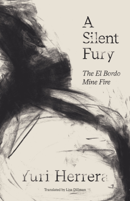 Cover for: A Silent Fury : The El Bordo Mine Fire