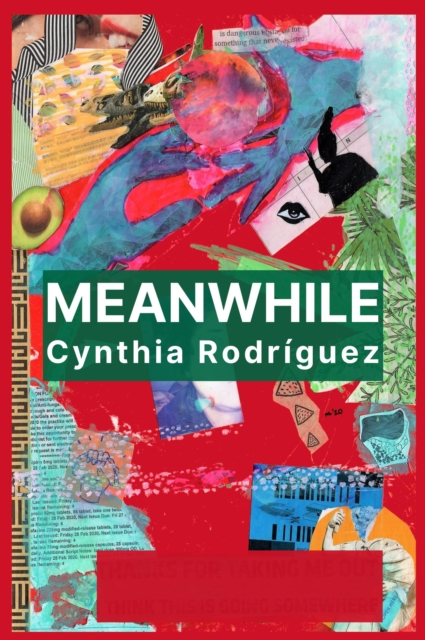 Cover for: Meanwhile