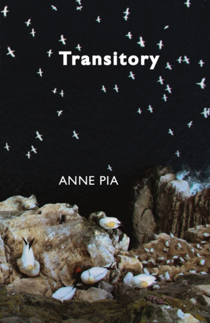 Image for Transitory