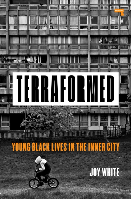 Image for Terraformed : Young Black Lives in the Inner City