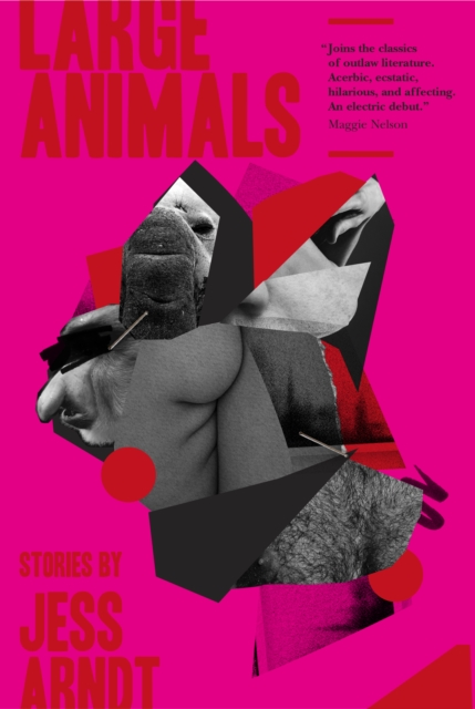 Image for Large Animals