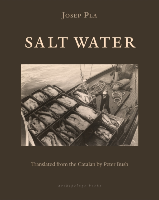 Cover for: Salt Water