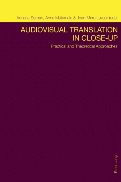 Audiovisual Translation in Close-Up: Practical and Theoretical Approaches (Pape.